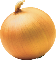 ing_onion.png